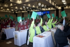 Voting on a resolution