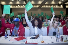 Delegates voting at the 2019 Annual Meeting
